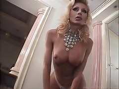 Nasty transsexual with fake hooters - &raquo_ .Up.By. --PowerGuido--